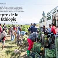 Magazine Afrique-Magazine 27092014