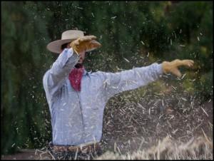 Pablo Rojas - El Mogor - Baja California - Mexique ludovic pollet copyright basse californie